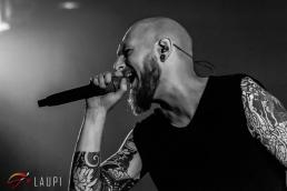 Damned Soul Fest - 19 janvier 2019