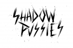 Shadow Pussies : Dernière Fête avant la Fin du Monde